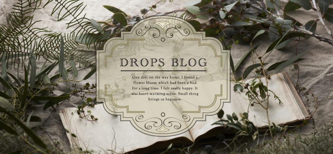 ドロップスブログ